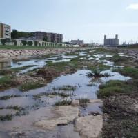 Řeka Francolí na jaře